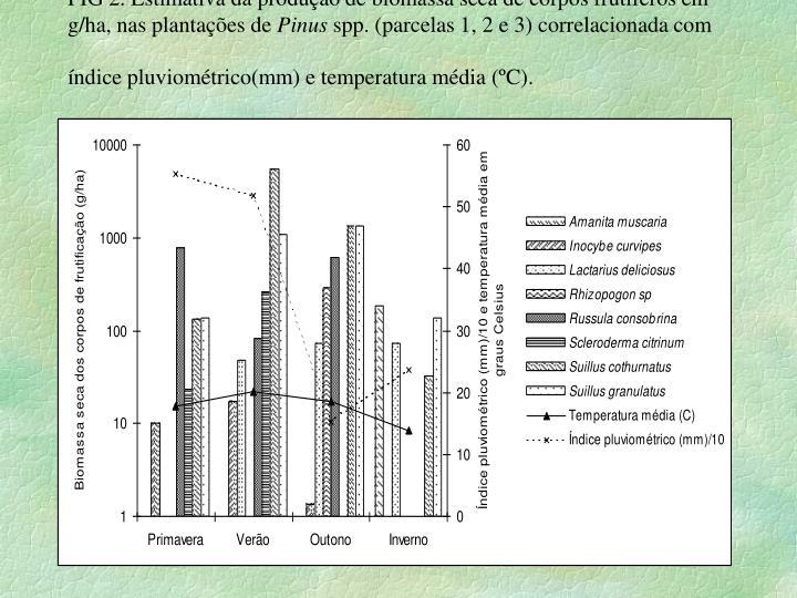 FIG 2. Estimativa da produção de biomassa seca de corpos frutíferos em g/ha, nas plantações de