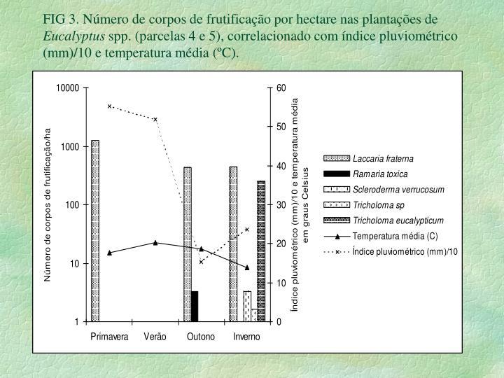 FIG 3. Número de corpos de frutificação por hectare nas plantações de