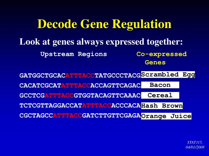Decode Gene Regulation