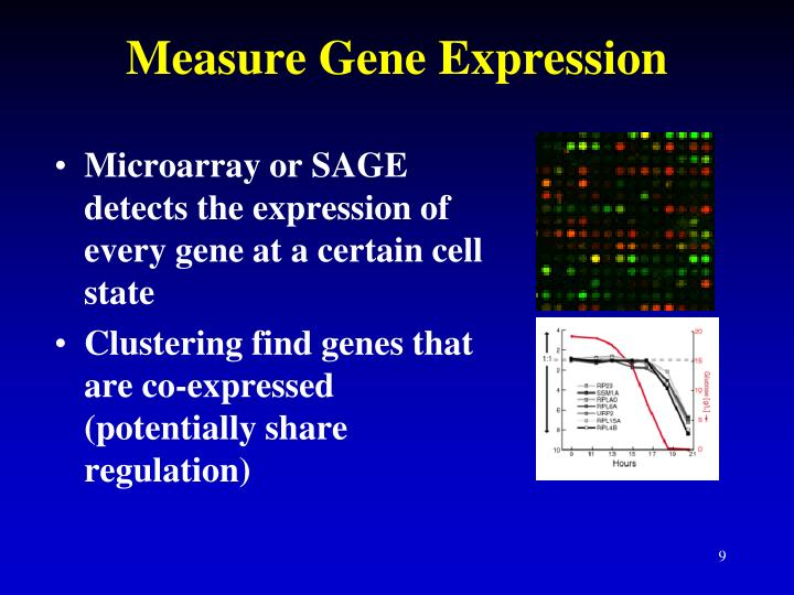 Measure Gene Expression