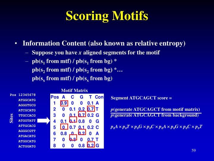 Motif Matrix
