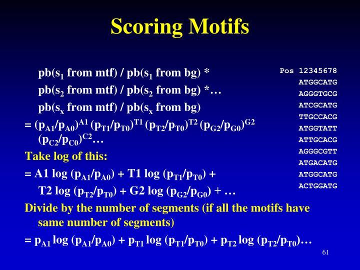 Scoring Motifs