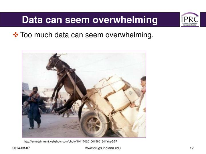 Data can seem overwhelming