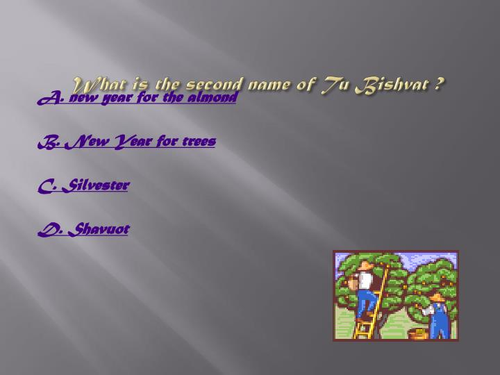 What is the second name of Tu Bishvat ?