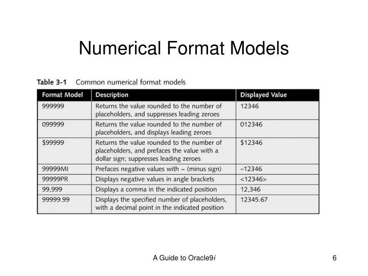 Numerical Format Models