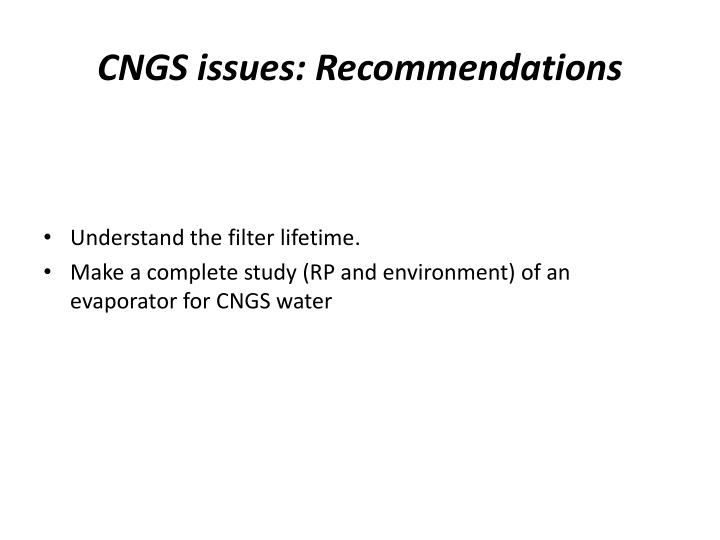 CNGS issues: Recommendations