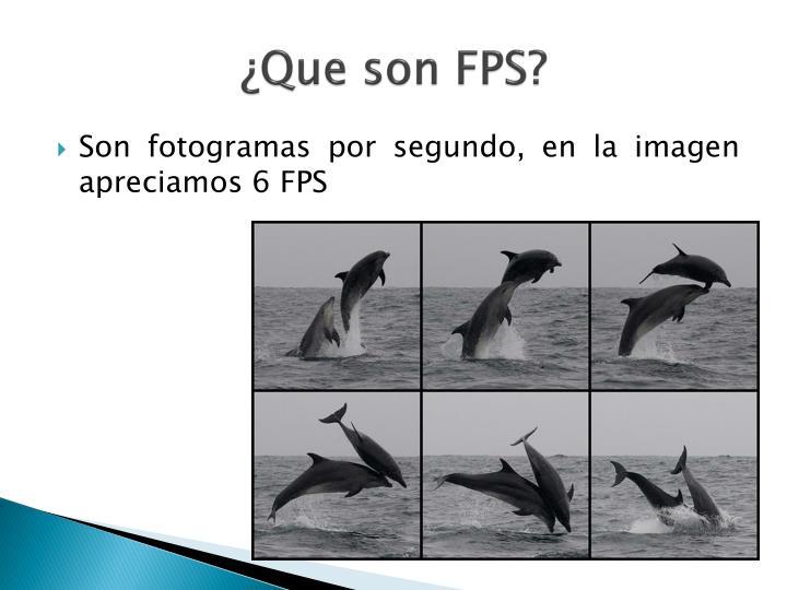 ¿Que son FPS?