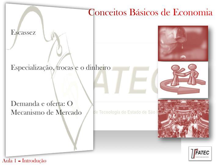 Conceitos Básicos de Economia