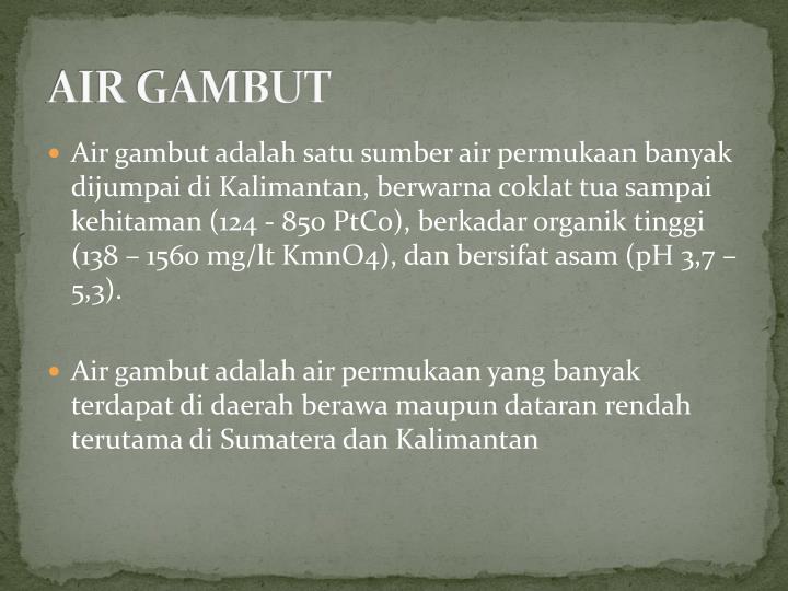 AIR GAMBUT