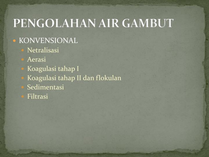 PENGOLAHAN AIR GAMBUT