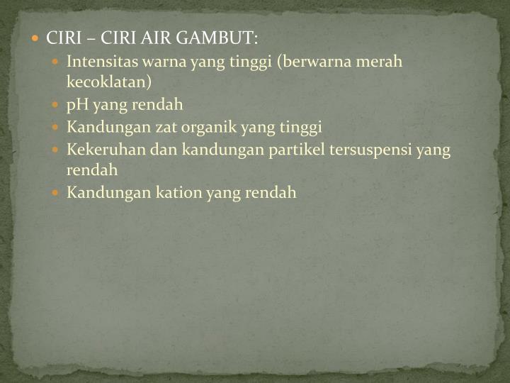 CIRI – CIRI AIR GAMBUT: