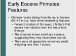 early eocene primates features