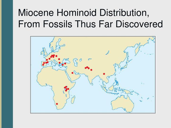 Miocene Hominoid Distribution, From Fossils Thus Far Discovered