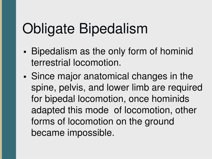 Obligate Bipedalism