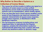 why bother to describe a system as a collection of cosine waves