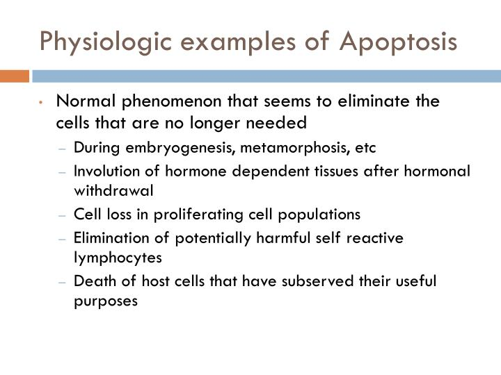 Physiologic examples of Apoptosis