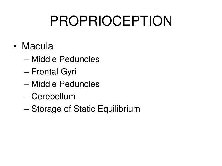 PROPRIOCEPTION