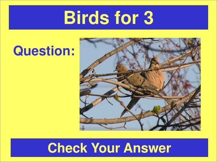 Birds for 3