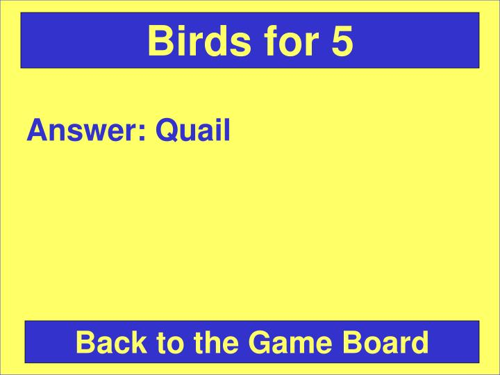 Birds for 5