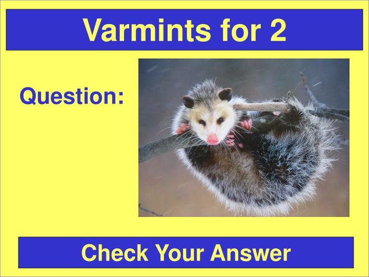 Varmints for 2