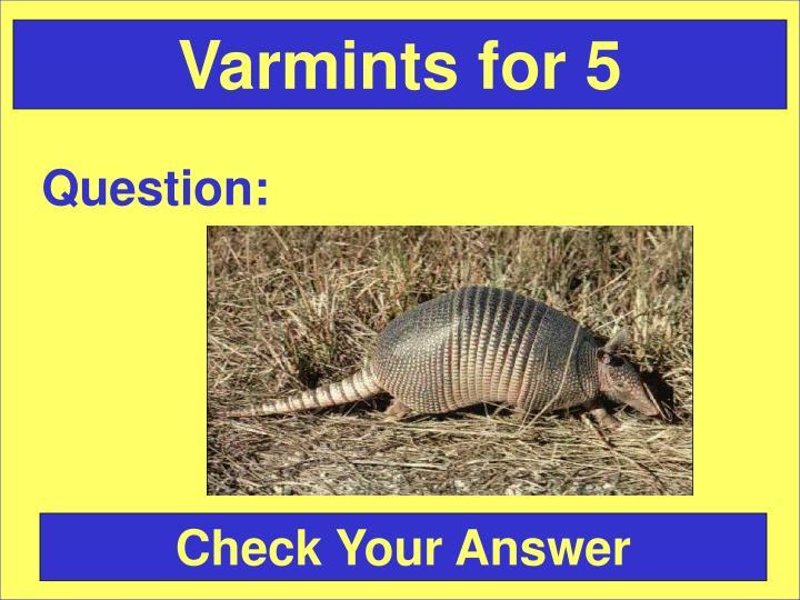 Varmints for 5