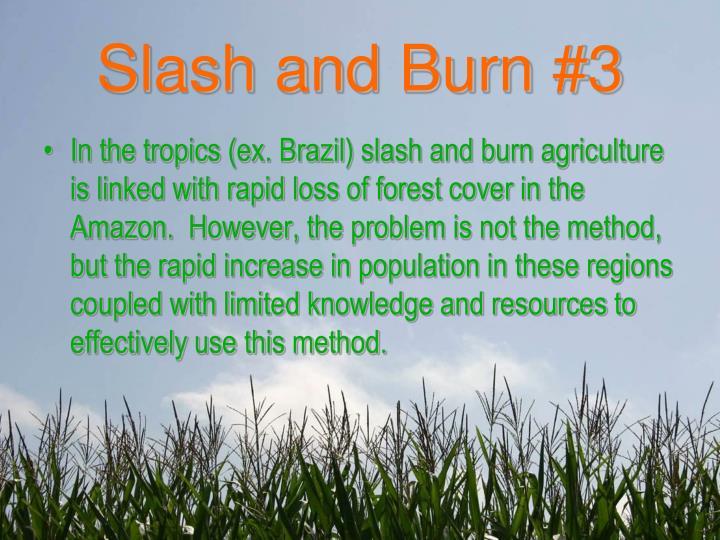 Slash and Burn #3