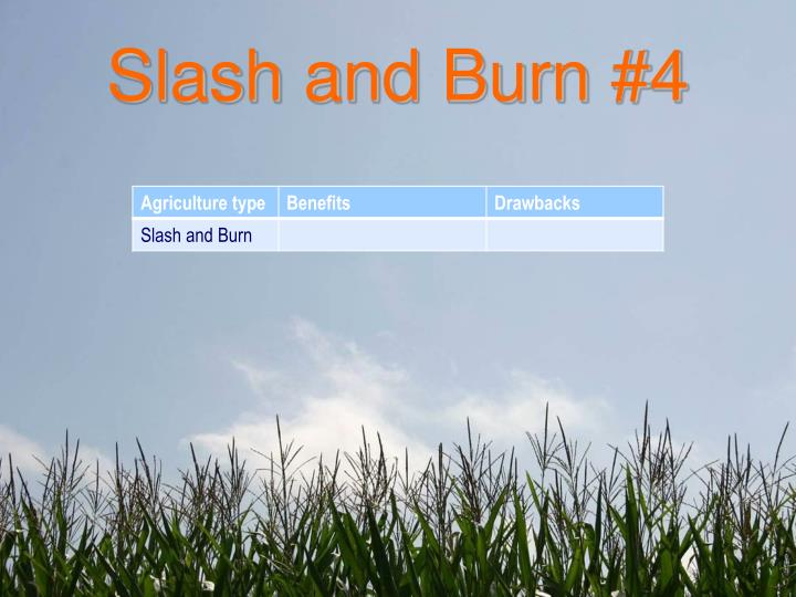 Slash and Burn #4