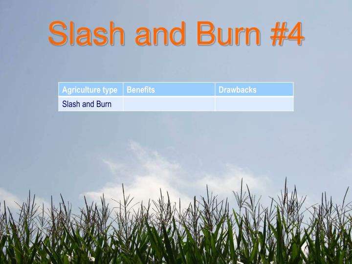 Slash and Burn #4