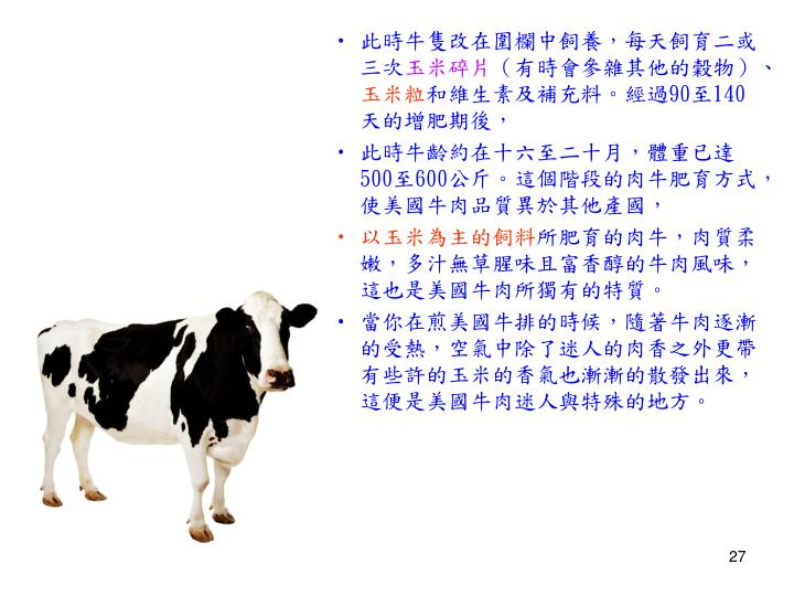 此時牛隻改在圍欄中飼養,每天飼育二或三次