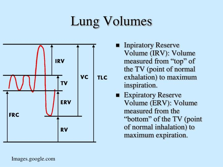 """Inpiratory Reserve Volume (IRV): Volume measured from """"top"""" of the TV (point of normal exhalation) to maximum inspiration."""