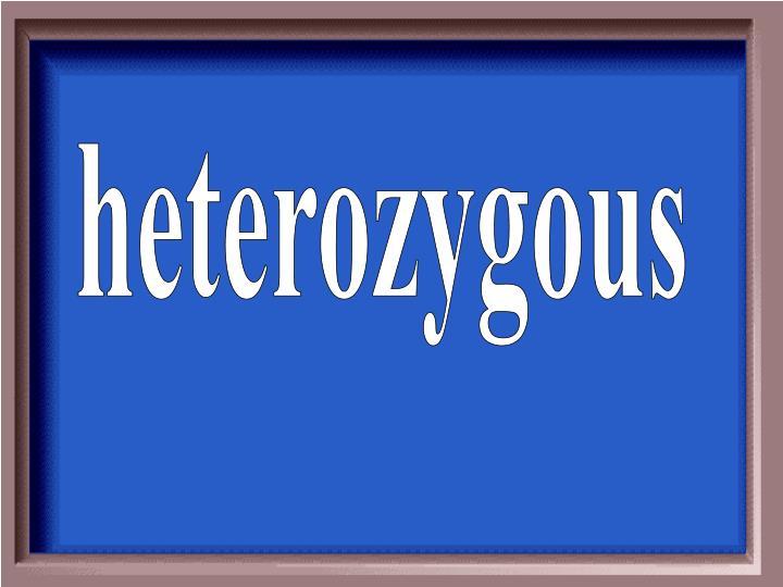 heterozygous