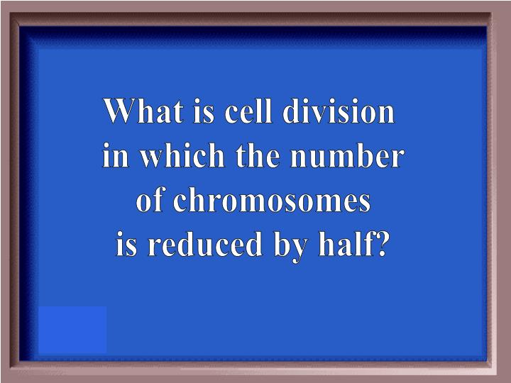What is cell division
