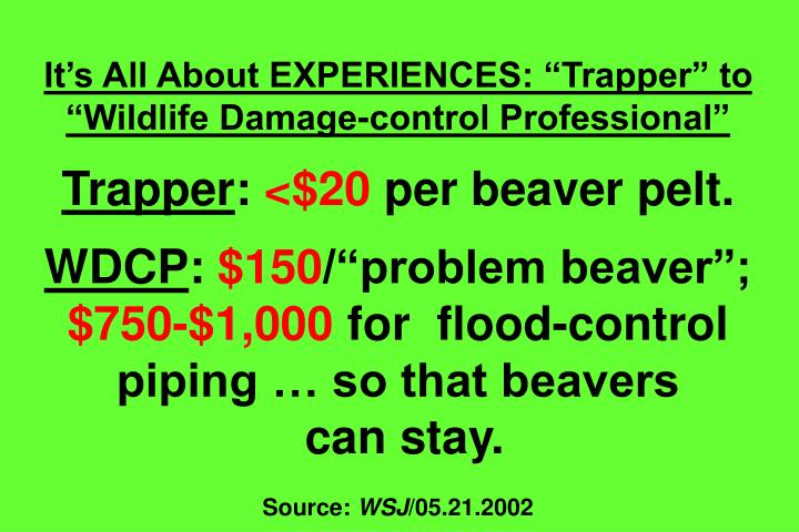 Its All About EXPERIENCES: Trapper to Wildlife Damage-control Professional