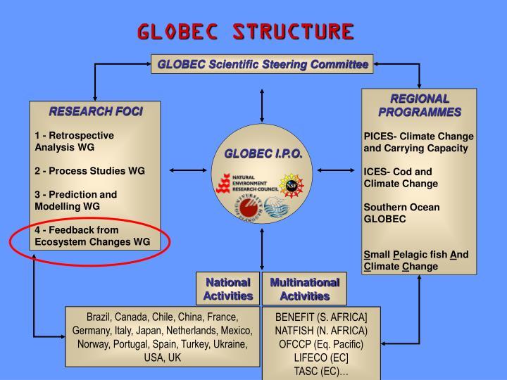GLOBEC STRUCTURE