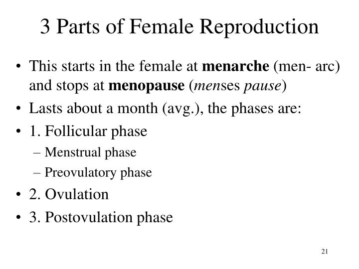 3 Parts of Female Reproduction
