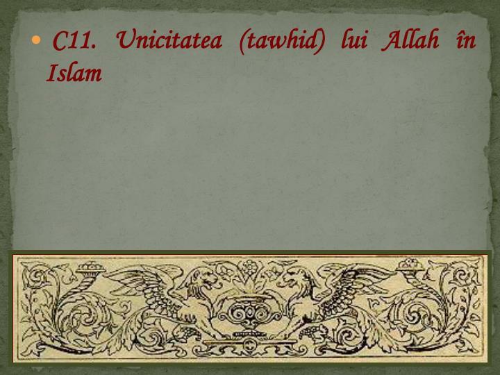 C11. Unicitatea (tawhid) lui Allah în Islam