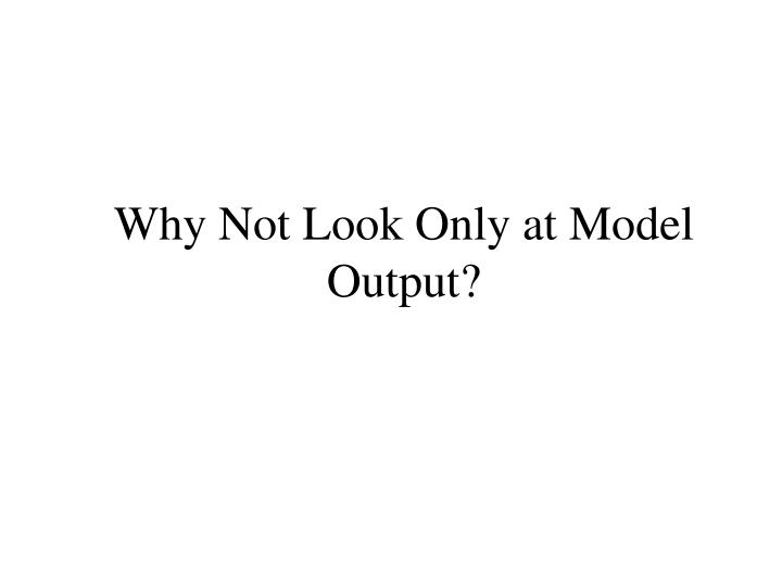 Why Not Look Only at Model Output?