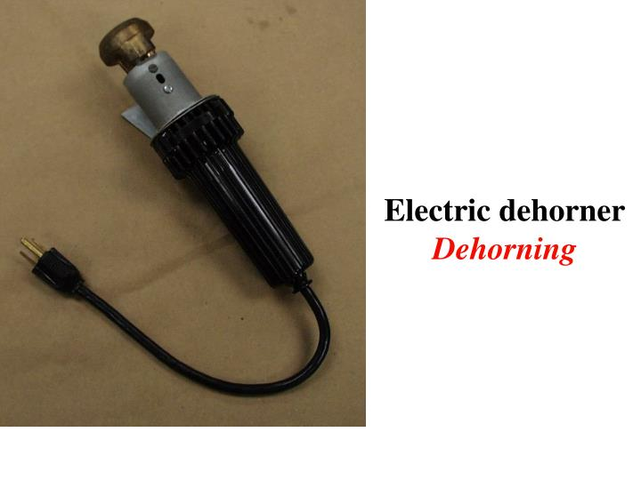 Electric dehorner