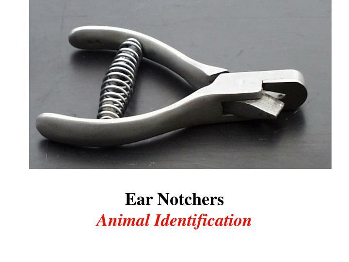 Ear Notchers