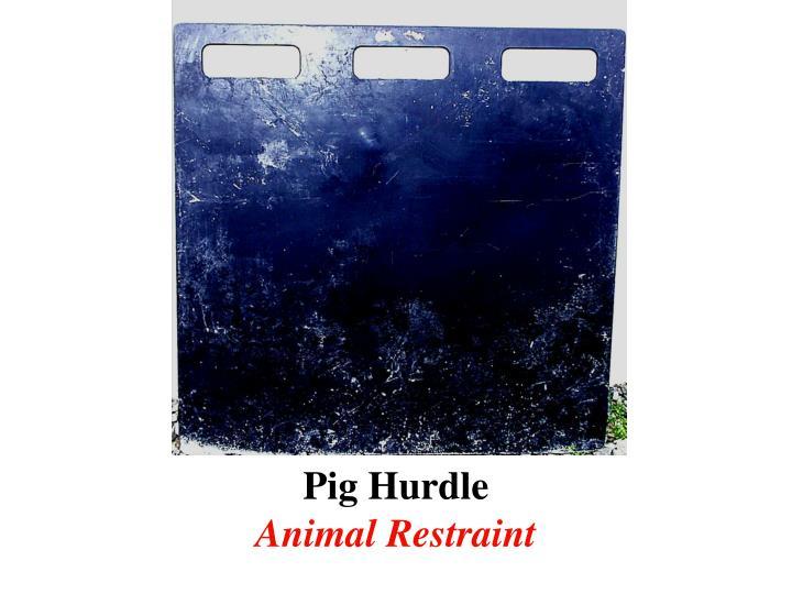 Pig Hurdle