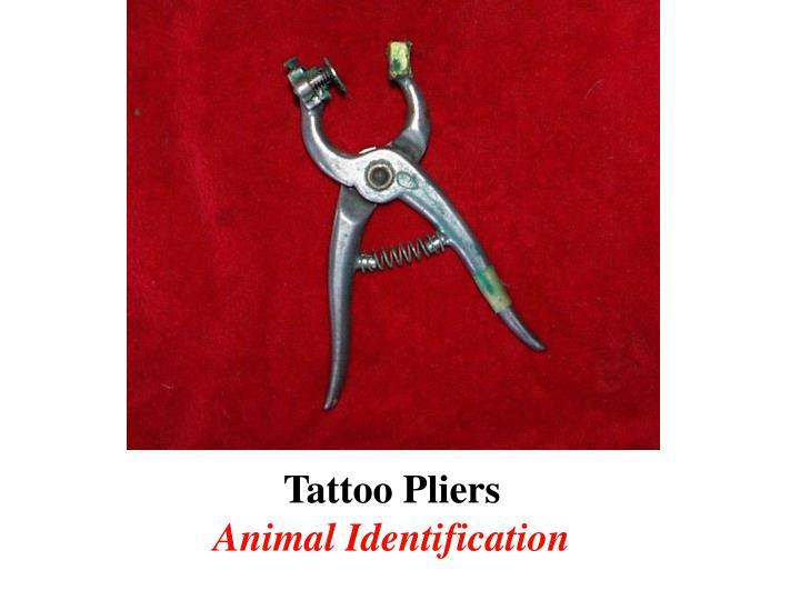 Tattoo Pliers