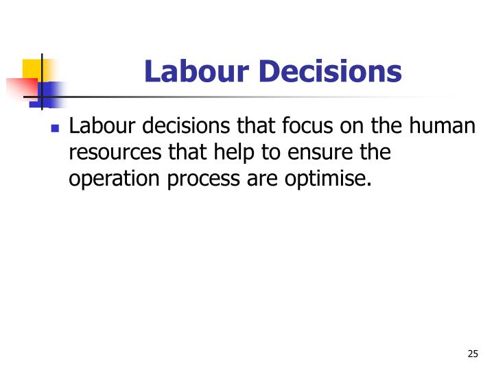 Labour Decisions