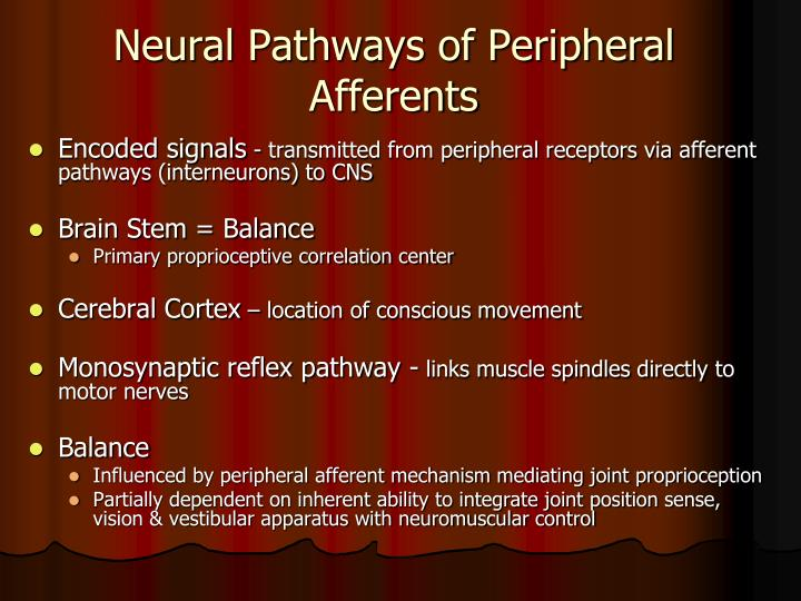 Neural Pathways of Peripheral Afferents
