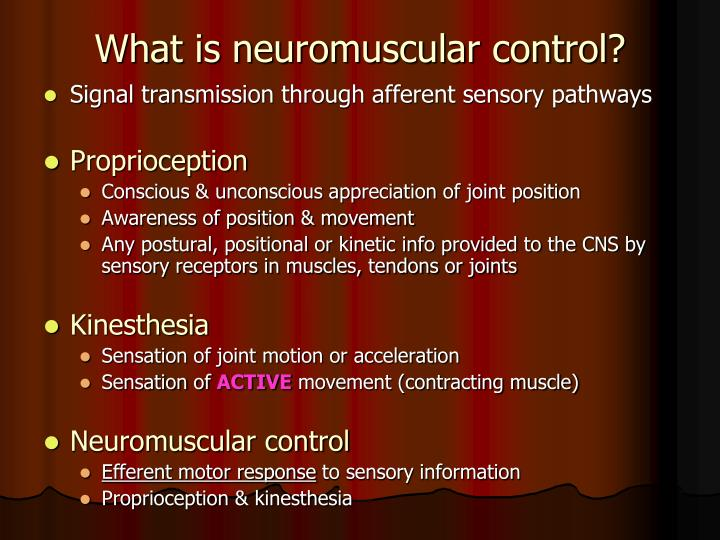 What is neuromuscular control?