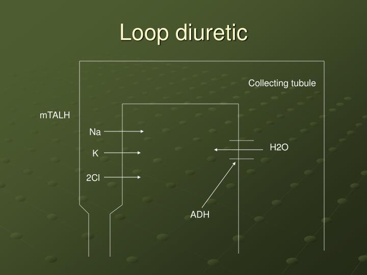 Loop diuretic