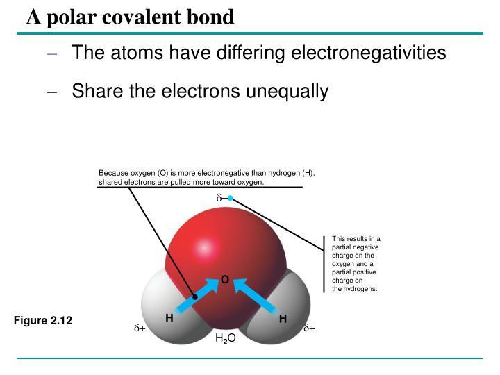A polar covalent bond