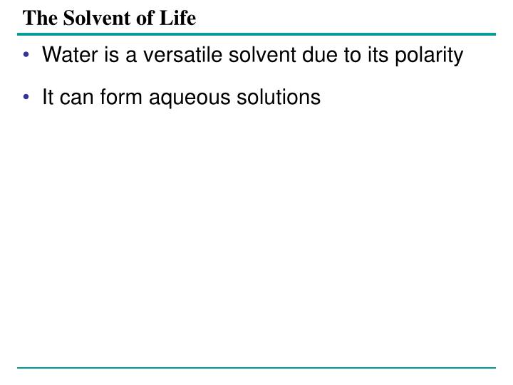 The Solvent of Life