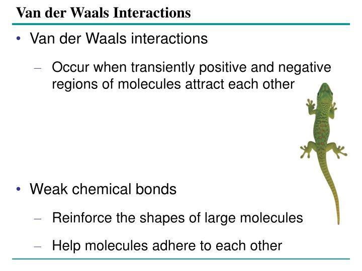 Van der Waals Interactions