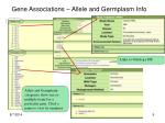 gene associations allele and germplasm info