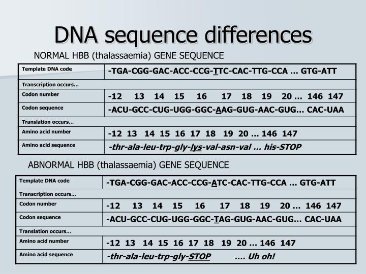 DNA sequence differences
